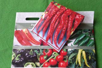 Własne sadzonki warzyw