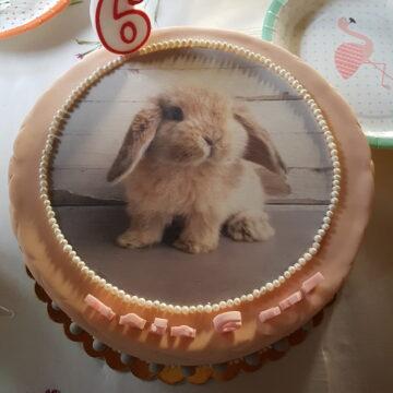 Urodzinowe przyjęcie dla dziecka